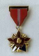 RIAN archive 589063 The YCL Honorary Badge.jpg